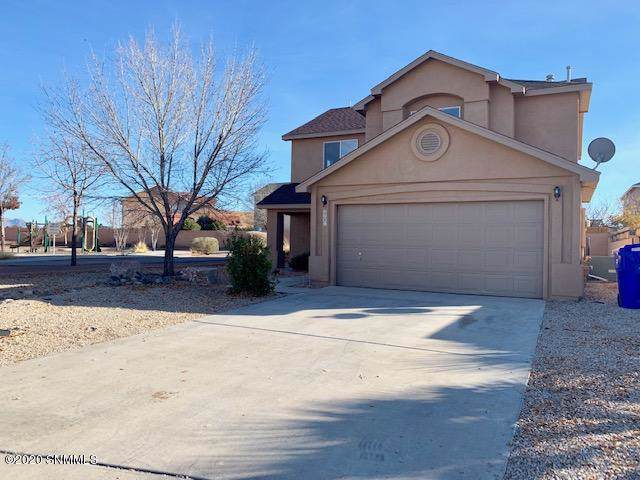 2801 Meriwether Street, Las Cruces, NM 88007 (MLS #2000087) :: Steinborn & Associates Real Estate