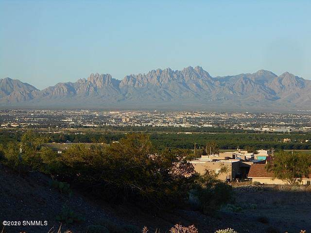 523 Larkspur, Las Cruces, NM 88007 (MLS #2000130) :: Better Homes and Gardens Real Estate - Steinborn & Associates