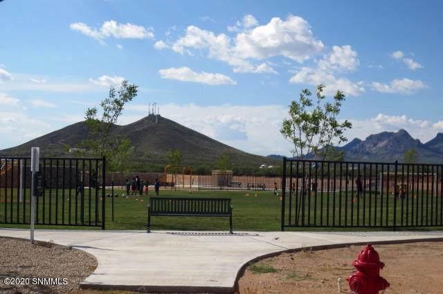 3680 Aegis Road, Las Cruces, NM 88012 (MLS #2000221) :: Steinborn & Associates Real Estate