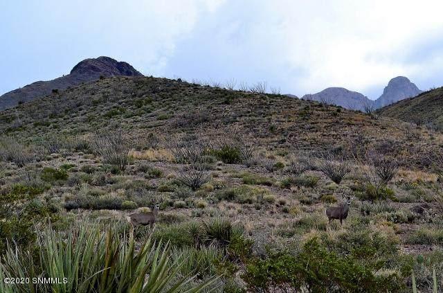 8B Pena Blanca Loop, Las Cruces, NM 88011 (MLS #2000577) :: Agave Real Estate Group