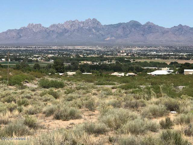 5910 Quesenberry Lane, Las Cruces, NM 88007 (MLS #2000578) :: Agave Real Estate Group