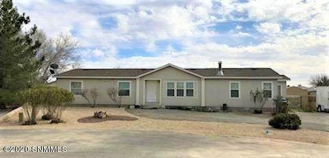 2961 Daffodill Lane, Las Cruces, NM 88007 (MLS #2000662) :: Better Homes and Gardens Real Estate - Steinborn & Associates