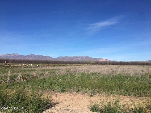 000 Secluded Court, Mesilla Park, NM 88047 (MLS #2000910) :: Better Homes and Gardens Real Estate - Steinborn & Associates