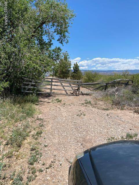 125 Sioux Trail, Tularosa, NM 88352 (MLS #2001367) :: Arising Group Real Estate Associates