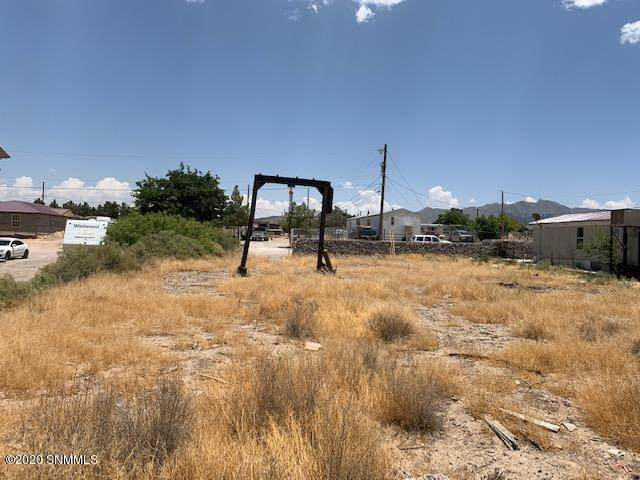 505 Timbers Street, Anthony, NM 88021 (MLS #2001555) :: Agave Real Estate Group
