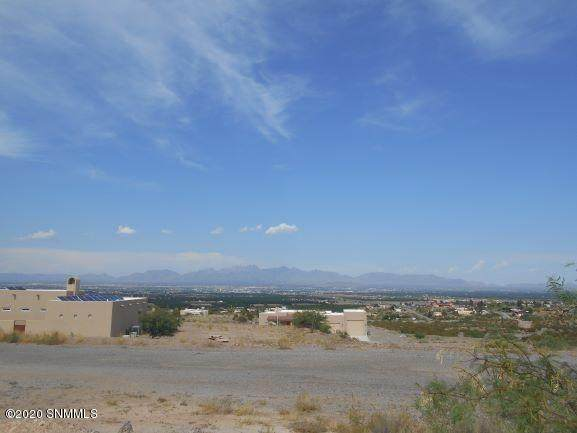 519 Larkspur Way, Las Cruces, NM 88007 (MLS #2001736) :: Better Homes and Gardens Real Estate - Steinborn & Associates