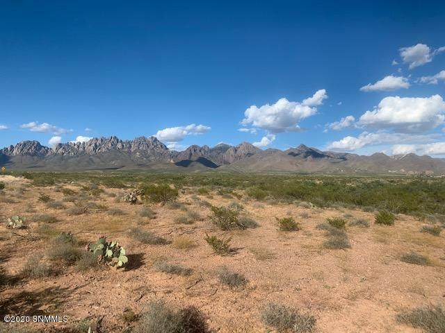 0 Dripping Springs, Las Cruces, NM 88011 (MLS #2002145) :: Better Homes and Gardens Real Estate - Steinborn & Associates