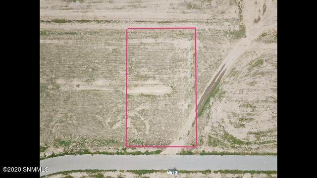 390 Barred Rock Court, Las Cruces, NM 88007 (MLS #2002541) :: Better Homes and Gardens Real Estate - Steinborn & Associates