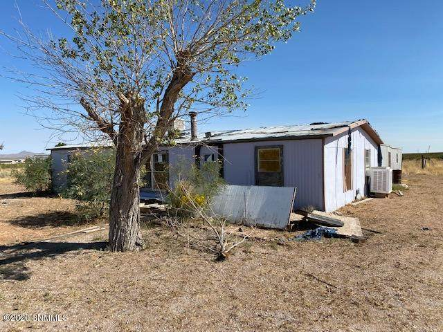 64 Creosote Road, Animas, NM 88020 (MLS #2002988) :: Better Homes and Gardens Real Estate - Steinborn & Associates