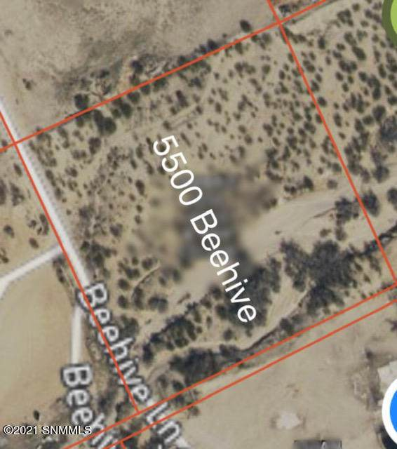 5500 Beehive Lane, Las Cruces, NM 88012 (MLS #2100294) :: Las Cruces Real Estate Professionals
