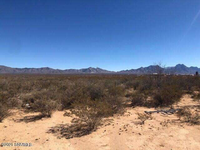 000 Slate Road, Las Cruces, NM 88012 (MLS #2100604) :: Agave Real Estate Group