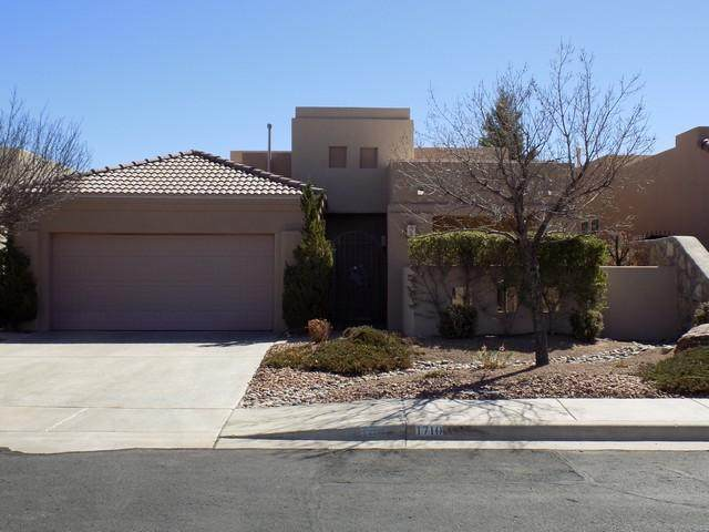 1710 Stone Mountain Lane, Las Cruces, NM 88011 (MLS #2101246) :: Better Homes and Gardens Real Estate - Steinborn & Associates