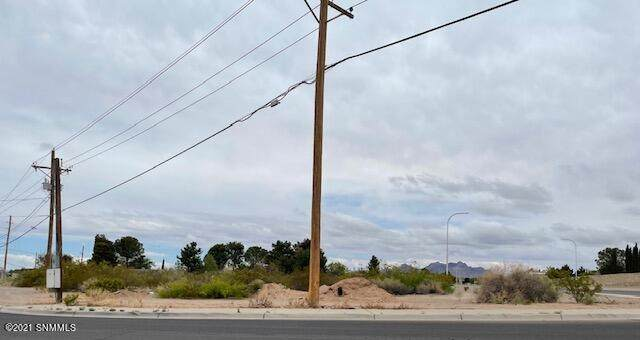 4111 Elks Drive, Las Cruces, NM 88007 (MLS #2101333) :: Better Homes and Gardens Real Estate - Steinborn & Associates