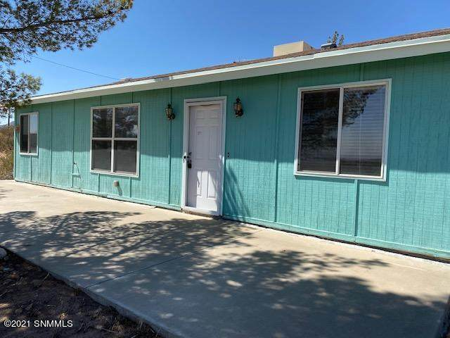 1213 Alta Vista Drive, Chaparral, NM 88081 (MLS #2101406) :: Better Homes and Gardens Real Estate - Steinborn & Associates