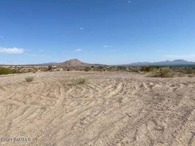 645 Lookout View Place, Las Cruces, NM 88007 (MLS #2101644) :: Better Homes and Gardens Real Estate - Steinborn & Associates