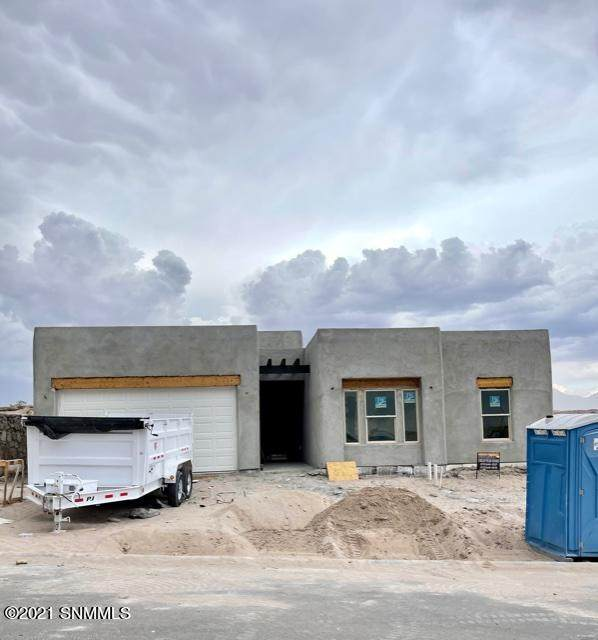 3018 Don Buck, Las Cruces, NM 88011 (MLS #2101768) :: Agave Real Estate Group