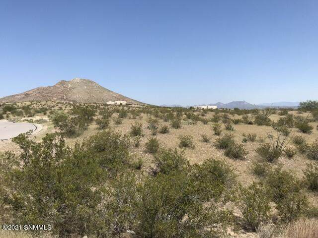 1324 Estancia Real Place, Las Cruces, NM 88007 (MLS #2102868) :: Agave Real Estate Group