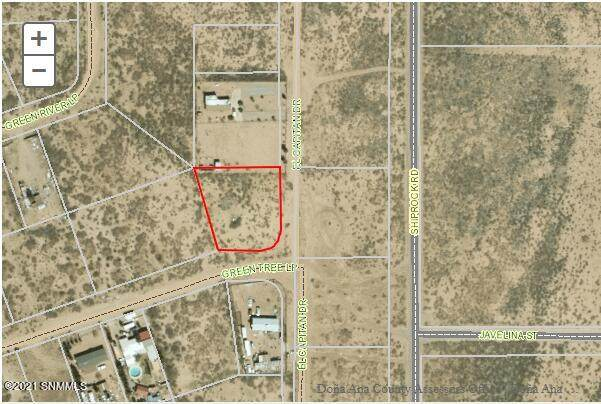 2020 Green Tree Loop, Chaparral, NM 88081 (MLS #2102894) :: Better Homes and Gardens Real Estate - Steinborn & Associates