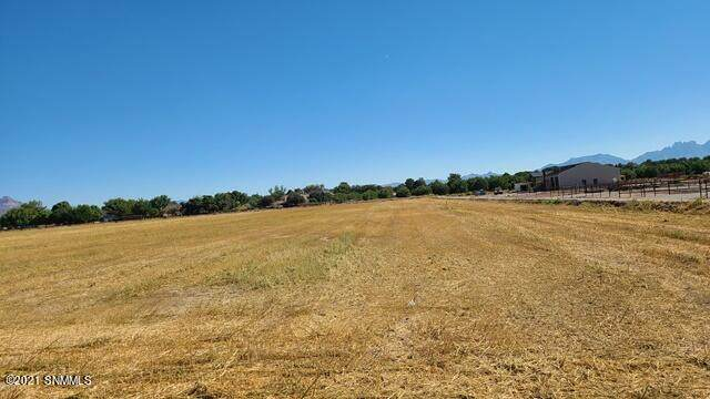 4760 Northwind Road, Las Cruces, NM 88007 (MLS #2102980) :: Las Cruces Real Estate Professionals