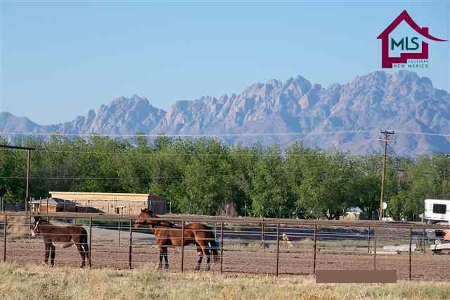 135 County Road B - 041, Las Cruces, NM 88005 (MLS #1201336) :: Steinborn & Associates Real Estate