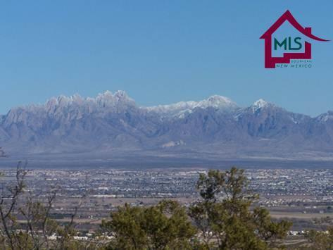 TBD Tbd Techo Alto Place, Las Cruces, NM 88007 (MLS #1500984) :: Steinborn & Associates Real Estate