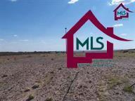 3836 Calle Arriba, Las Cruces, NM 88012 (MLS #1502174) :: Steinborn & Associates Real Estate