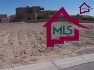 3834 Via Del Valle, Las Cruces, NM 88012 (MLS #1502176) :: Steinborn & Associates Real Estate