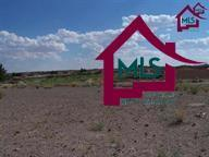 8201 Pissarro Drive, Las Cruces, NM 88007 (MLS #1503232) :: Steinborn & Associates Real Estate
