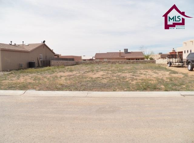 0000 Puffin Street, Las Cruces, NM 88012 (MLS #1600556) :: Steinborn & Associates Real Estate