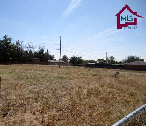 Lot 4 Lot 4 Rio Grande Street, Las Cruces, NM 88001 (MLS #1600962) :: Steinborn & Associates Real Estate