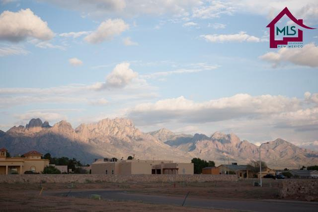 5950 Big Jim Drive, Las Cruces, NM 88012 (MLS #1601713) :: Steinborn & Associates Real Estate