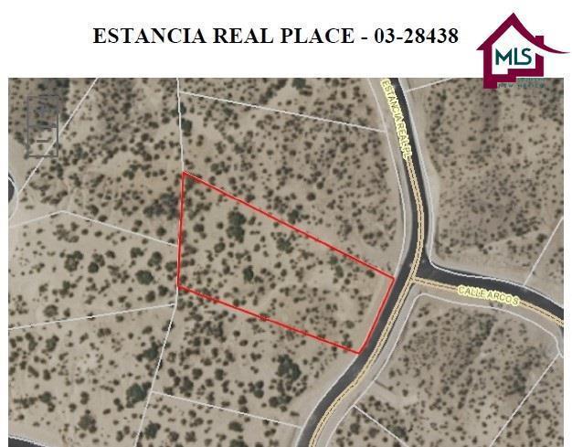 1325 Estancia Real Place, Las Cruces, NM 88007 (MLS #1602783) :: Steinborn & Associates Real Estate