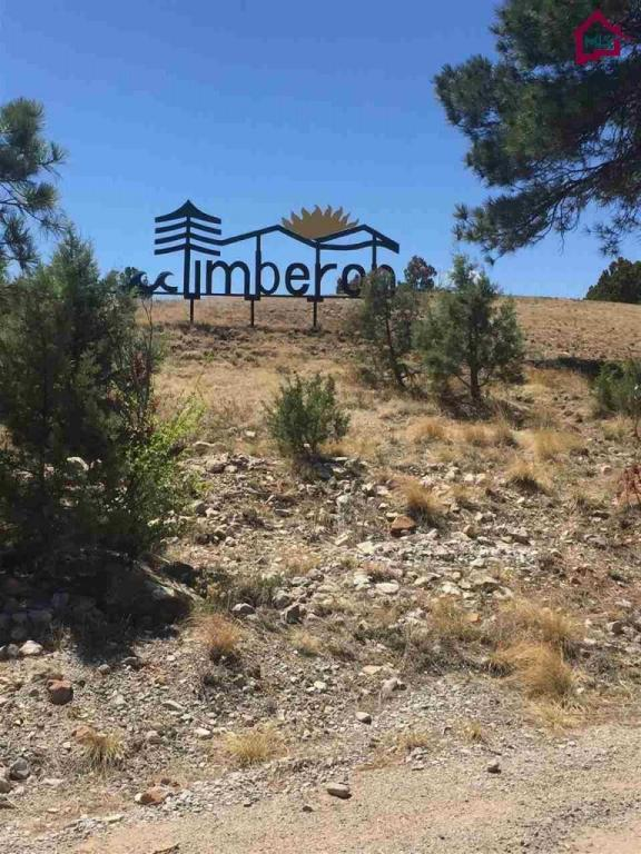 0000 Rocky Trail Road, Timberon, NM 88350 (MLS #1701150) :: Steinborn & Associates Real Estate