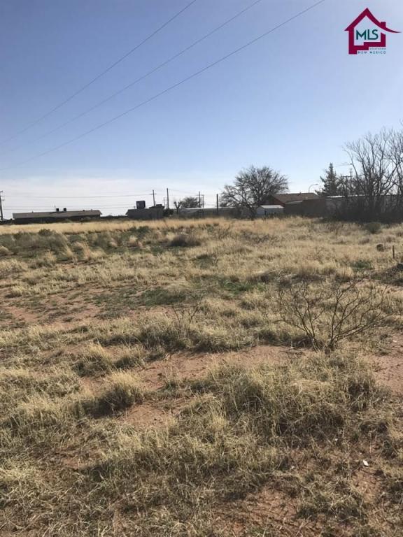 0001 Jimmie Street, Las Cruces, NM 88012 (MLS #1701808) :: Steinborn & Associates Real Estate