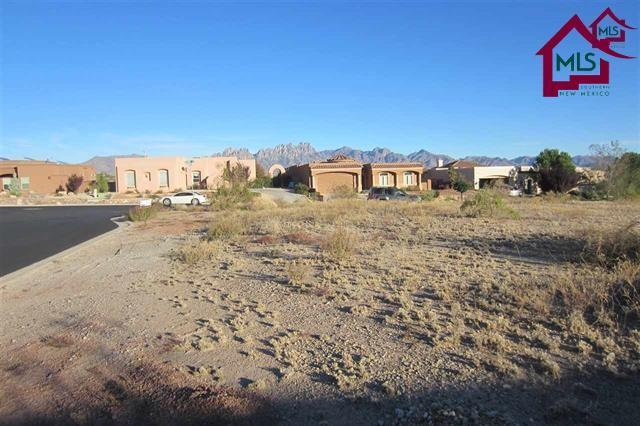 4492 Nambe Arc, Las Cruces, NM 88011 (MLS #1702037) :: Steinborn & Associates Real Estate