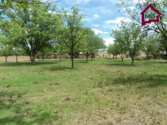1940 Calle Pacana, Mesilla, NM 88046 (MLS #1702041) :: Steinborn & Associates Real Estate