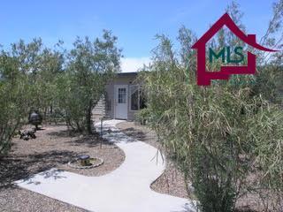 27700 NE San Diego Road, Deming, NM 88030 (MLS #1702060) :: Steinborn & Associates Real Estate