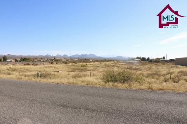 000 South Track Trail, Las Cruces, NM 88007 (MLS #1703285) :: Steinborn & Associates Real Estate