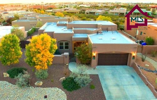 4484 Nambe Arc, Las Cruces, NM 88011 (MLS #1703360) :: Steinborn & Associates Real Estate