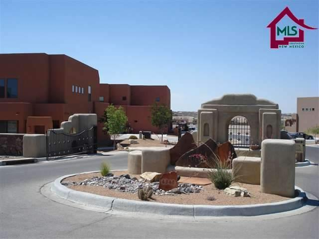 4324 Nambe Court, Las Cruces, NM 88011 (MLS #1703420) :: Steinborn & Associates Real Estate