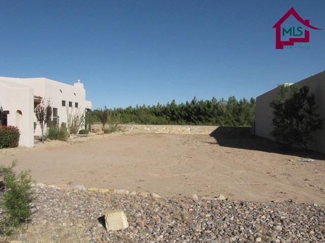 1542 Fairway Village Drive, Las Cruces, NM 88007 (MLS #1800019) :: Steinborn & Associates Real Estate