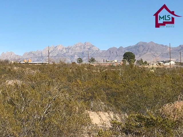 5092 Las Alturas Drive, Las Cruces, NM 88011 (MLS #1800316) :: Steinborn & Associates Real Estate