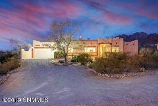 5157 Silver King Road, Las Cruces, NM 88011 (MLS #1903224) :: Agave Real Estate Group