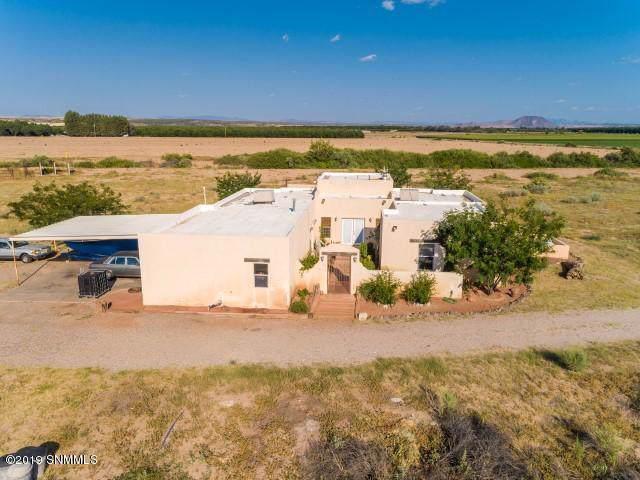 805 E County Road 008, Rincon, NM 87940 (MLS #1903235) :: Steinborn & Associates Real Estate
