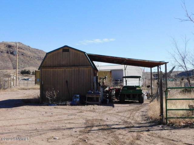 10843 Hwy 152, Hillsboro, NM 88042 (MLS #2000180) :: Arising Group Real Estate Associates