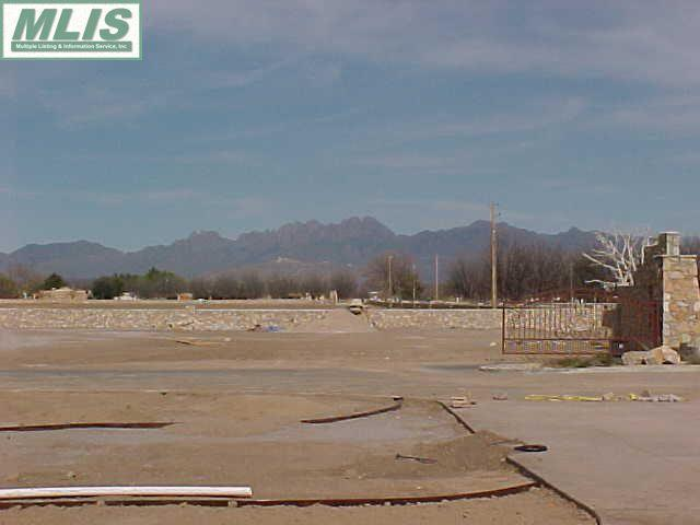2840 Mesilla Acres Road, Las Cruces, NM 88005 (MLS #783483) :: Steinborn & Associates Real Estate