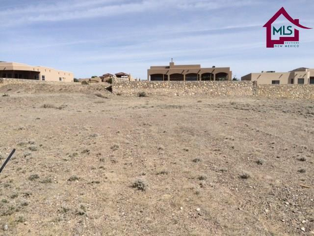 4267 Russian Sage Drive, Las Cruces, NM 88011 (MLS #1401013) :: Steinborn & Associates Real Estate