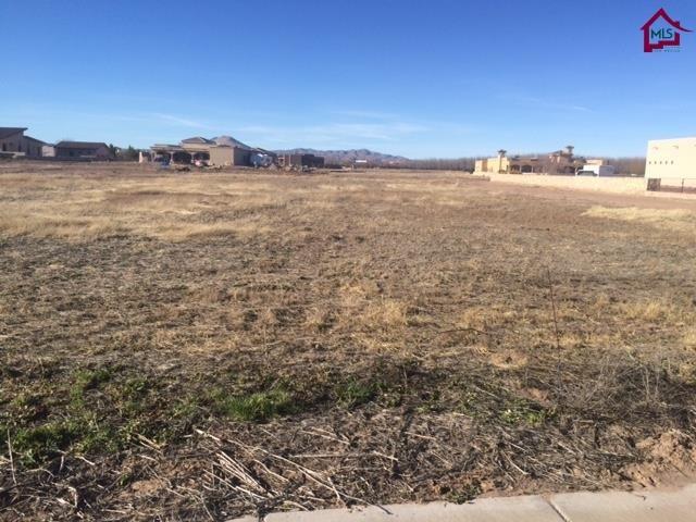4694 Dulcinea Drive, Las Cruces, NM 88005 (MLS #1500399) :: Steinborn & Associates Real Estate