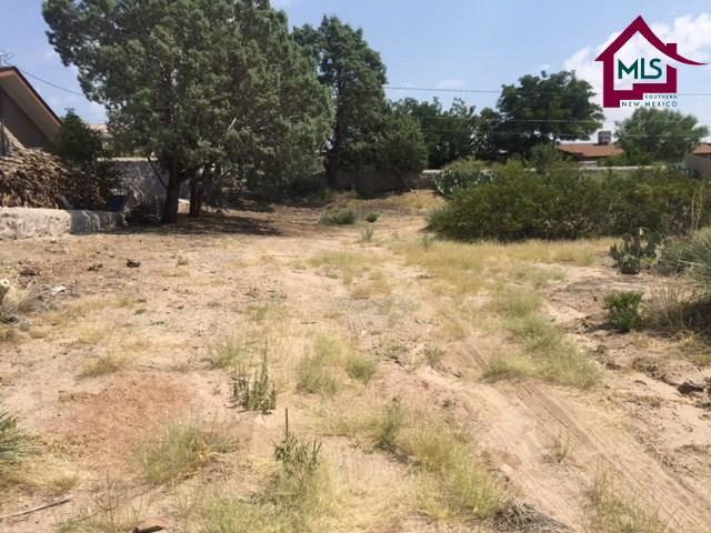 3016 Missouri Avenue, Las Cruces, NM 88011 (MLS #1702485) :: Steinborn & Associates Real Estate