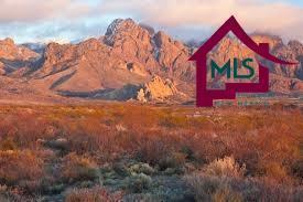 7750 Charro Road, Las Cruces, NM 88012 (MLS #1703087) :: Steinborn & Associates Real Estate